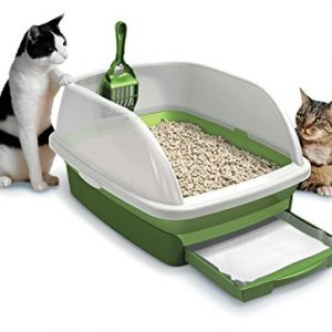 Cat Litter & Box