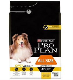 All Size Dog