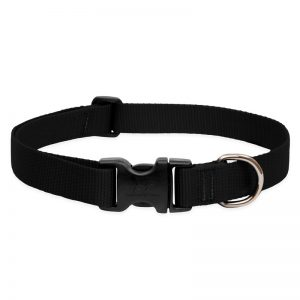 BASICS-Adjustable-Collar-Black